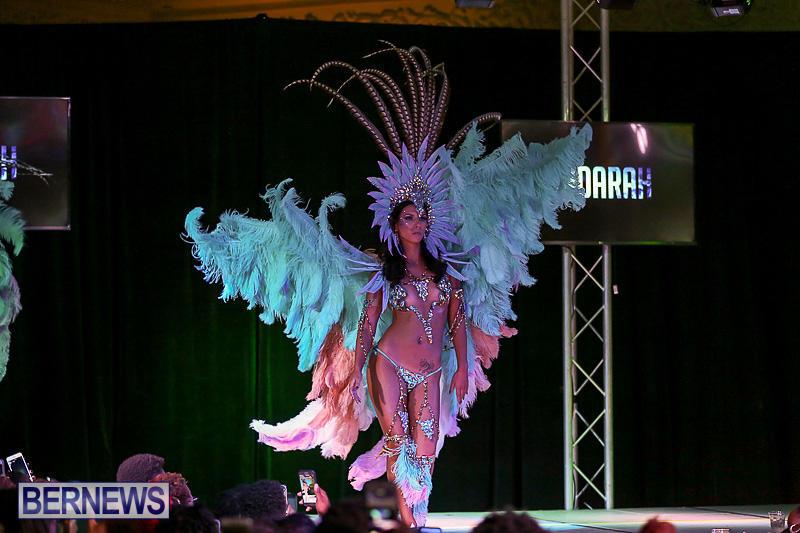 Bermuda-Heroes-Weekend-Band-Launch-January-8-2017-181