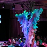 Bermuda Heroes Weekend Band Launch, January 8 2017-187