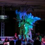 Bermuda Heroes Weekend Band Launch, January 8 2017-198