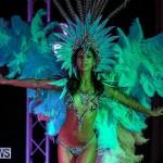 Bermuda Heroes Weekend Band Launch, January 8 2017-199