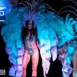 Bermuda Heroes Weekend Band Launch, January 8 2017-201