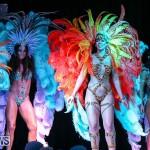Bermuda Heroes Weekend Band Launch, January 8 2017-208