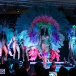 Bermuda Heroes Weekend Band Launch, January 8 2017-215