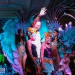 Bermuda Heroes Weekend Band Launch, January 8 2017-217