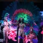 Bermuda Heroes Weekend Band Launch, January 8 2017-75