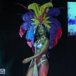 Bermuda Heroes Weekend Band Launch, January 8 2017-79
