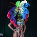 Bermuda Heroes Weekend Band Launch, January 8 2017-81