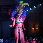 Bermuda Heroes Weekend Band Launch, January 8 2017-87