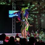 Bermuda Heroes Weekend Band Launch, January 8 2017-91