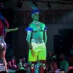 Bermuda Heroes Weekend Band Launch, January 8 2017-93