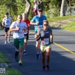 Bermuda Race Weekend 10K, January 14 2017-77
