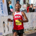 Bermuda Race Weekend Half and Full Marathon, January 15 2017-12
