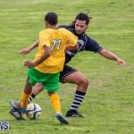 Football Devonshire Cougars vs PHC Bermuda, January 1 2017-59