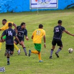 Football Devonshire Cougars vs PHC Bermuda, January 1 2017-61