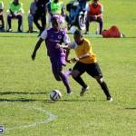 Football First Division Bermuda Jan 2 2017 (9)
