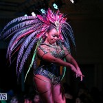 Intense Bermuda Heroes Weekend Band Launch, January 8 2017-120
