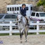RES Horse Show Bermuda, January 21 2017-1