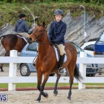 RES Horse Show Bermuda, January 21 2017-10