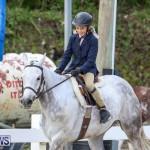 RES Horse Show Bermuda, January 21 2017-14