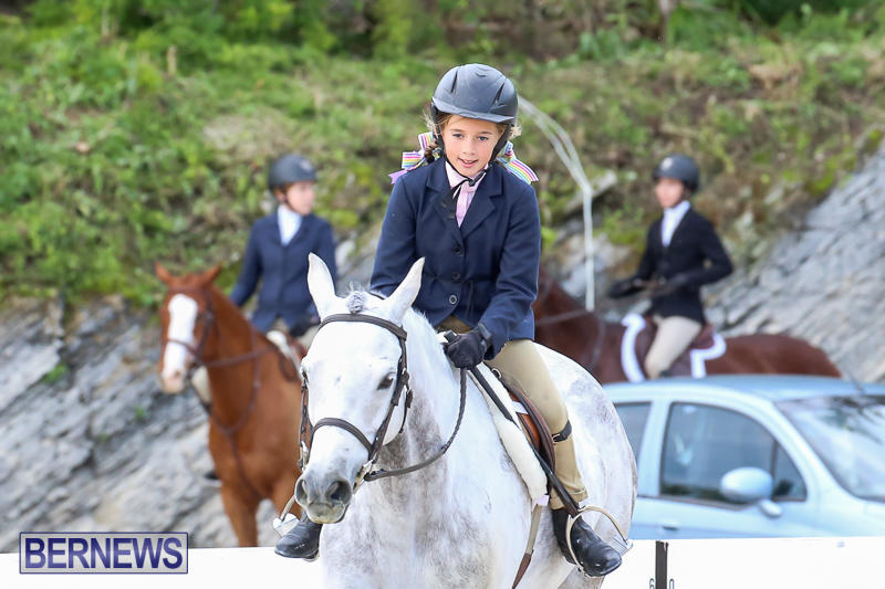 RES-Horse-Show-Bermuda-January-21-2017-15