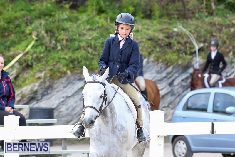 RES-Horse-Show-Bermuda-January-21-2017-16