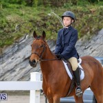 RES Horse Show Bermuda, January 21 2017-17