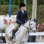 RES Horse Show Bermuda, January 21 2017-2
