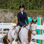 RES Horse Show Bermuda, January 21 2017-21