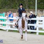 RES Horse Show Bermuda, January 21 2017-22