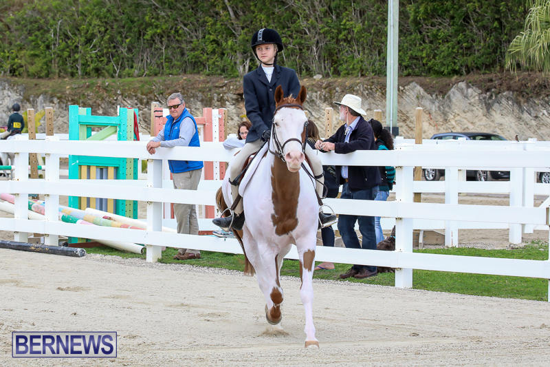 RES-Horse-Show-Bermuda-January-21-2017-22