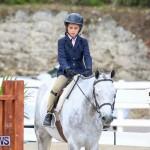 RES Horse Show Bermuda, January 21 2017-23