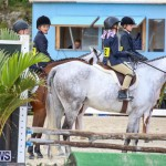 RES Horse Show Bermuda, January 21 2017-24
