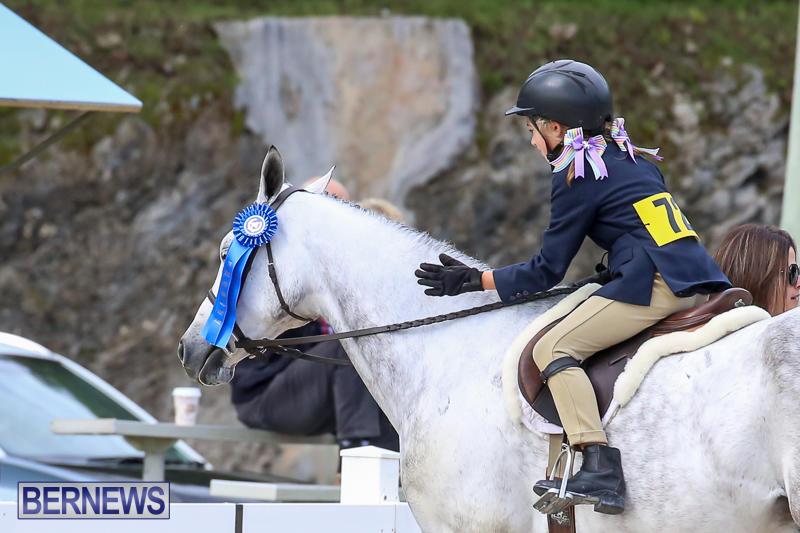 RES-Horse-Show-Bermuda-January-21-2017-27