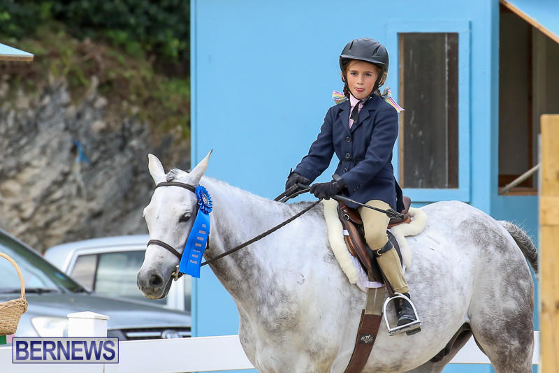 RES-Horse-Show-Bermuda-January-21-2017-29