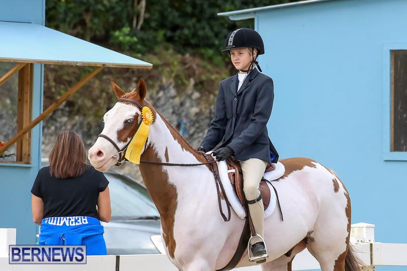 RES-Horse-Show-Bermuda-January-21-2017-30
