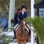 RES Horse Show Bermuda, January 21 2017-31