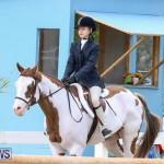 RES Horse Show Bermuda, January 21 2017-32