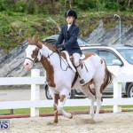 RES Horse Show Bermuda, January 21 2017-33