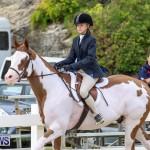RES Horse Show Bermuda, January 21 2017-35