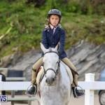 RES Horse Show Bermuda, January 21 2017-4