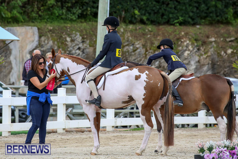 RES-Horse-Show-Bermuda-January-21-2017-41