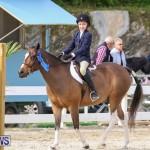 RES Horse Show Bermuda, January 21 2017-44
