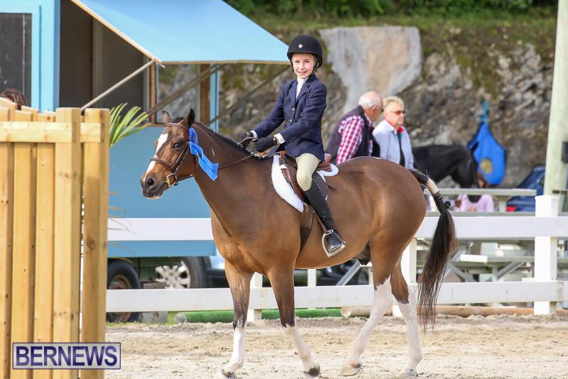 RES-Horse-Show-Bermuda-January-21-2017-44
