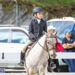 RES Horse Show Bermuda, January 21 2017-45