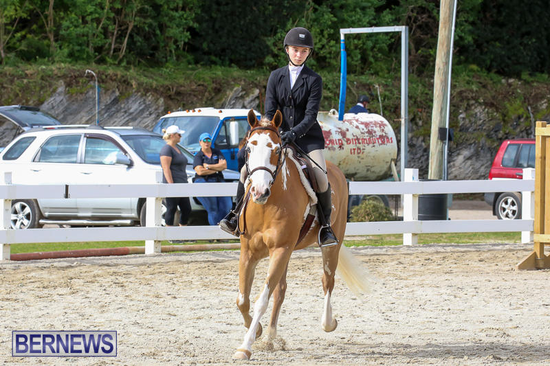 RES-Horse-Show-Bermuda-January-21-2017-48