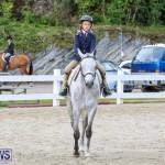 RES Horse Show Bermuda, January 21 2017-5