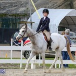 RES Horse Show Bermuda, January 21 2017-52