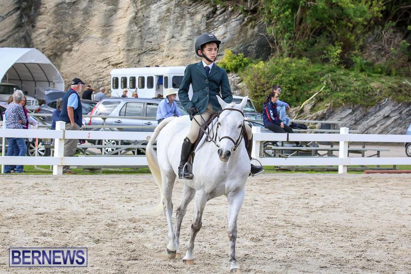 RES-Horse-Show-Bermuda-January-21-2017-55