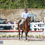 RES Horse Show Bermuda, January 21 2017-58