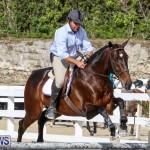 RES Horse Show Bermuda, January 21 2017-60